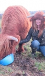 Highland Cow Hat