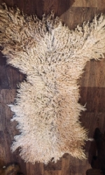 Masham rescue Rugs SOLD